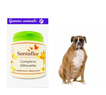 Complexe Silhouette pour animaux
